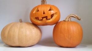 Three Pumpkins are Better than One! Photo by Veronica Hackethal