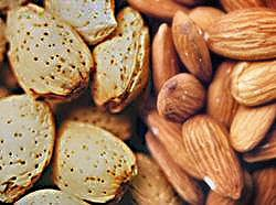 Almonds are packed full of nutrients, including calcium!